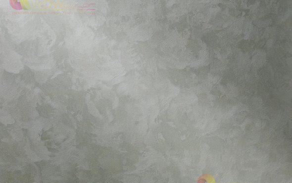 seta-silver-wowcolor-photo-2021-14-1